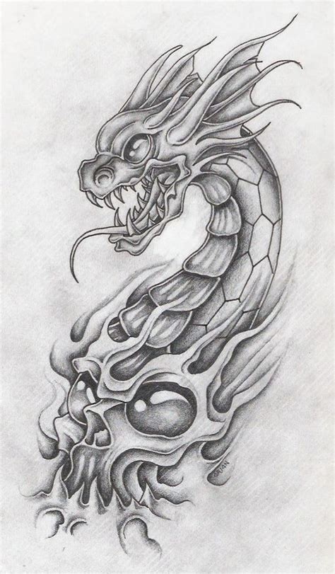 dragon and skull tattoo designs новости звери dragons and drawings