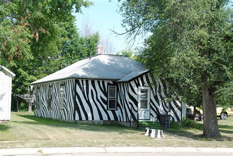 house zebra zebra house bassett photo rich jeffrey photos at pbase