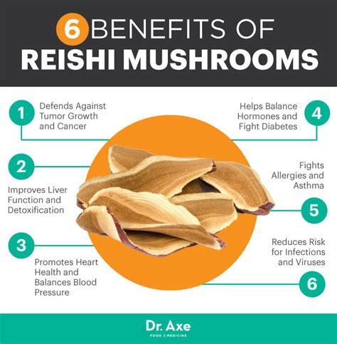 Reishi Liver Detox by Reishi Fights Cancer Improves Liver Detox