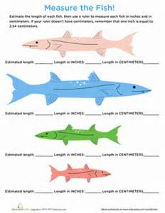 measure a fish centimeters amp inches worksheet