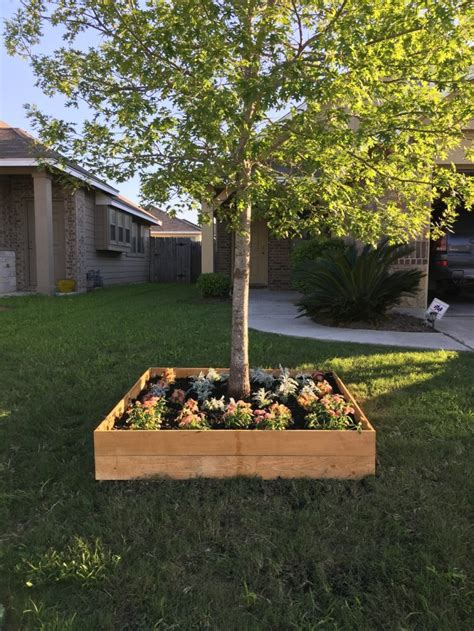eye catching flower beds  trees