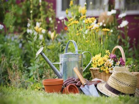 gartenpflanzen pflegeleicht gartenpflanzen garten