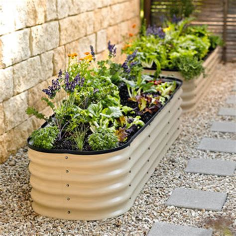 Vegetable Garden Layout Tips Raised Bed Vegetable Garden Layout