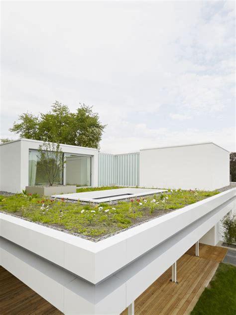 distinct  simple rooftop garden  house  home