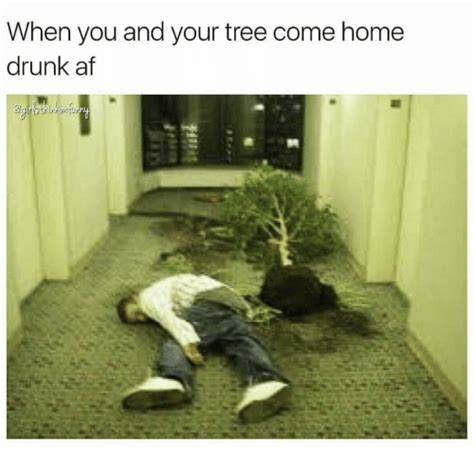 when you and your tree come home af af meme on sizzle