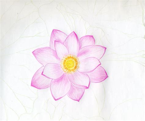 Easy Real Flowers To Draw by Easy Drawing Flowers At Getdrawings Free For