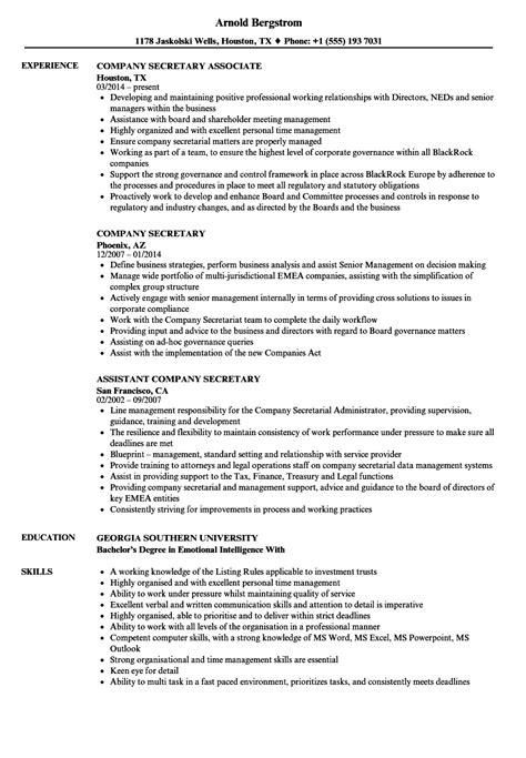 executive resume sample chief marketing officer executive resume