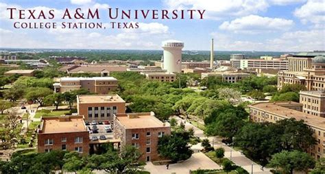 Gardens Apartments Tamu 20 Things To Before Moving To College Station