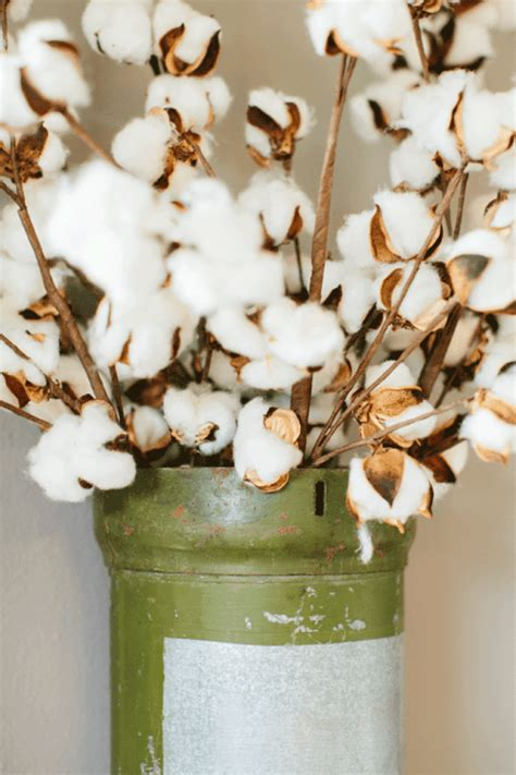 xmas floral decoration using cotton stalks decorating with cotton