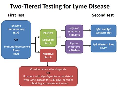 Mba Disease by Lymepolicywonk Lyme Disease Testing The Cdc Labcorp And