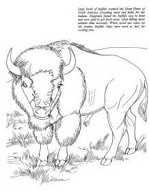 Animal Coloring To Print Quot Buffalo Quot For Kids Bison Coloring Page