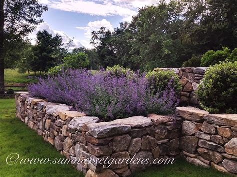 rustikale mauern garten 7 secrets to creating a country cottage garden huffpost