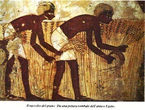 alimentazione antichi egizi c era una volta il pane