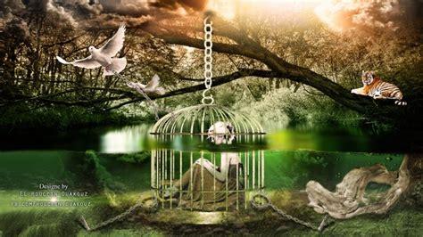 prisoner  sorrows