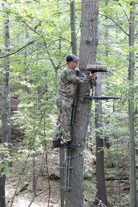 where can i get a tree stand how to choose the right treestand for your needs