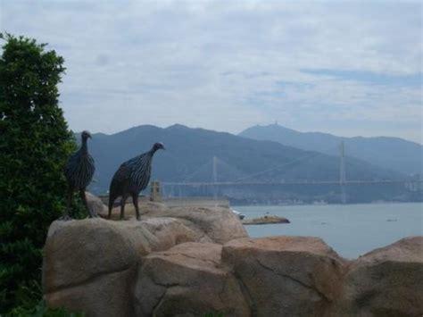 Tiket Noahs Ark Hongkong Anak noah s ark hong kong cina review tripadvisor