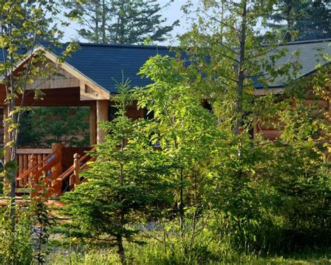 Mill Creek Cabin by Cing Cabin At Mackinaw Mill Creek Cing Picture Of Mackinaw Mill Creek Cground