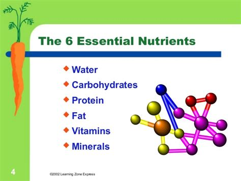 carbohydrates a nutrient ppt on nutrients