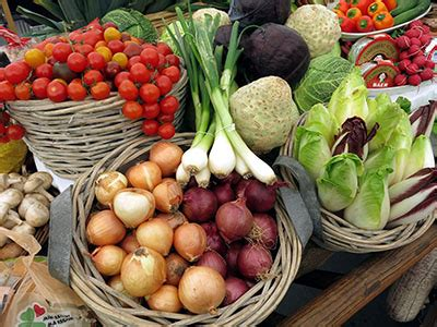 Tomaten Säen Zeitpunkt 5612 by Pflanzkalender Aussaat Ernte Finde Die Richtige Zeit
