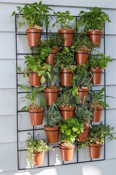 Pflanzen Auf Balkon by Kr 228 Uter Auf Dem Balkon Pflanzen Wie Legt Einen
