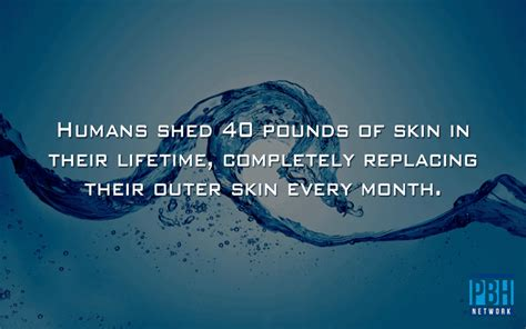 Excessive Skin Shedding In Humans by 22 Mind Blowing Facts You Didn T Tell You All