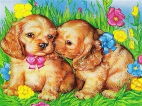 sweet puppies sweet puppies pictures photos and images for and