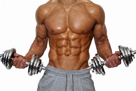 imagenes de fitness hombres consigue brazos grandes en 6 semanas fitonica com