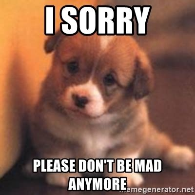 Dont Be Mad At Me Meme - i sorry please don t be mad anymore cute puppy meme