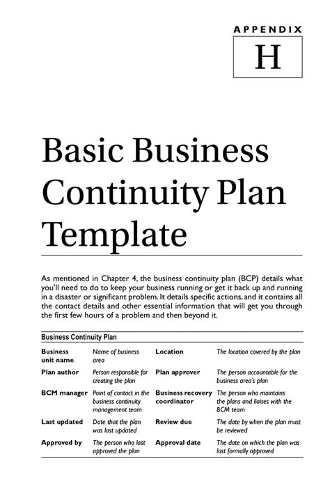 basic business template business continuity plan template tryprodermagenix org