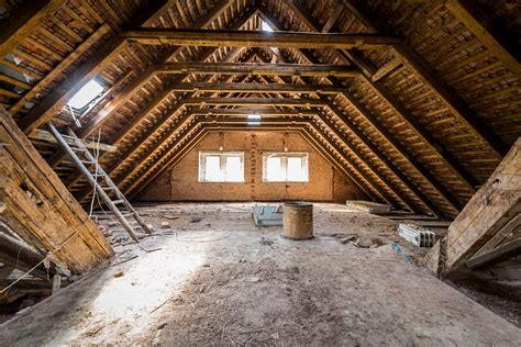 attic cleaning how often should you clean your attic green rat