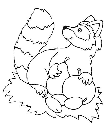 Printable Raccoon Coloring Pages Coloring Me Raccoon Coloring Page