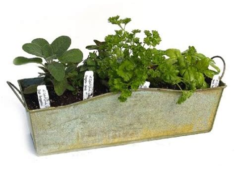 herb pots for windowsill windowsill herb planter kit yard garden pinterest