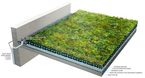 design guidelines green roofs 4 3 green roofs philadelphia water stormwater plan review