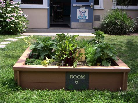 Garden Design Garden Design With How To Plant Herbs In Vegetable Box Garden