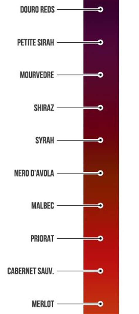 types of reds best 20 shiraz wine ideas on wine guide wine