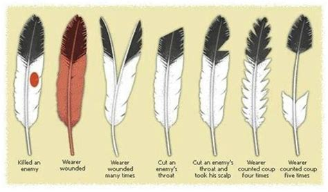 what does a feather tattoo mean eagle feather symbolism eagles eagle feathers other
