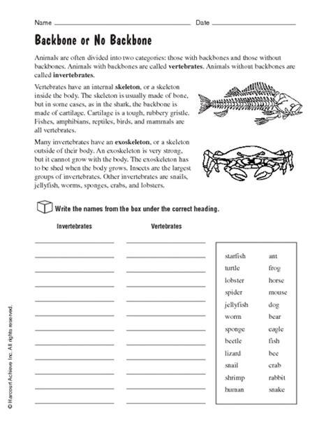free printable worksheets vertebrates invertebrates vertebrate and invertebrate worksheets free worksheets