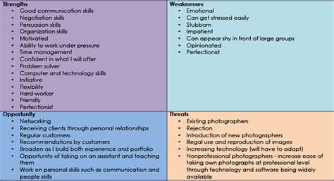 mc swot analysis  cv holly constantine photography