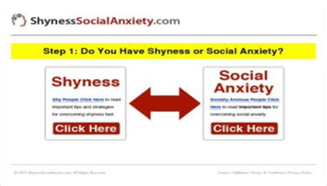 When Shyness Attacks by How To Overcome Shyness And Social Phobia How To
