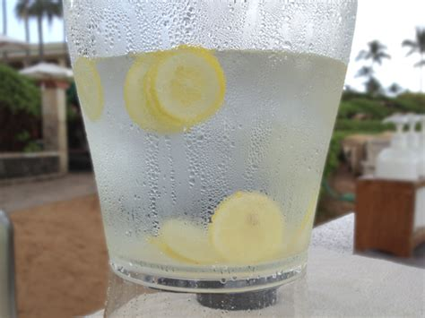 Manfaat Detox Water by Infused Water Lemon Khasiat Images