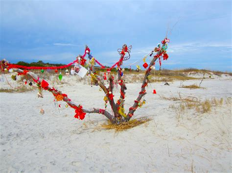 images of christmas on the beach christmas beach picture from all around the world 2016 2017