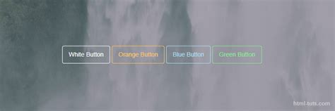 background color transparent css css transparent buttons with border html tuts