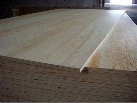 home depot paint grade plywood pine plywood theplywood