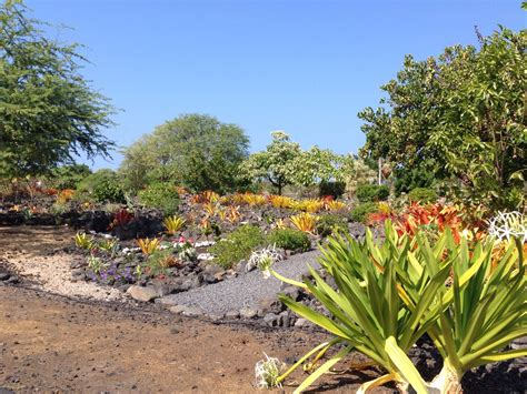Sadie Seymour Botanical Gardens In Kailua Kona Sadie Kona Botanical Gardens