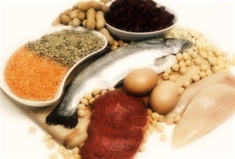 quali alimenti contengono proteine dove si trovano le proteine cibi ricchi di proteine