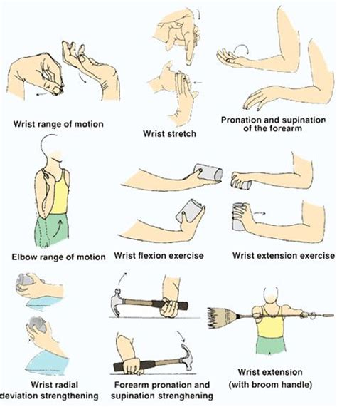 24 best images about physical therapy forearm on