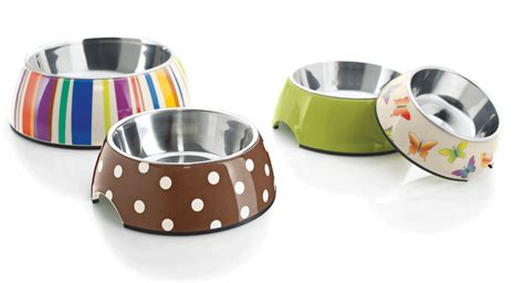 pet accessories pet accessories lostpetlocator co uk