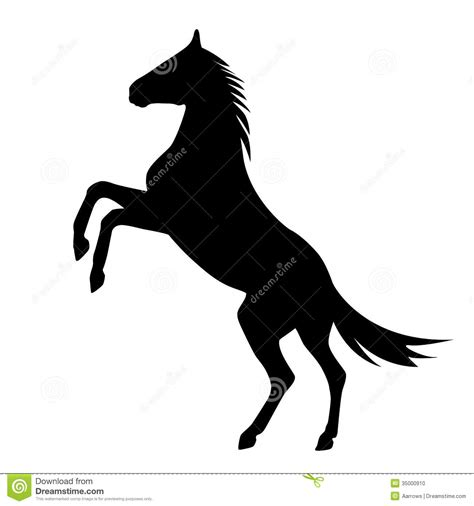 mustang horse silhouette wild horses rearing related keywords suggestions wild