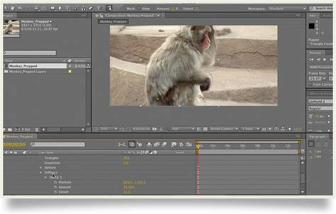 tutorial after effects puppet tool animating with the puppet tool in after effects