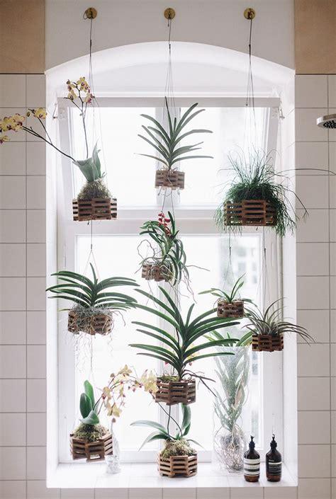 Best Window Plants Best 25 Kitchen Garden Window Ideas On Window